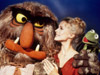 Muppet Show photo